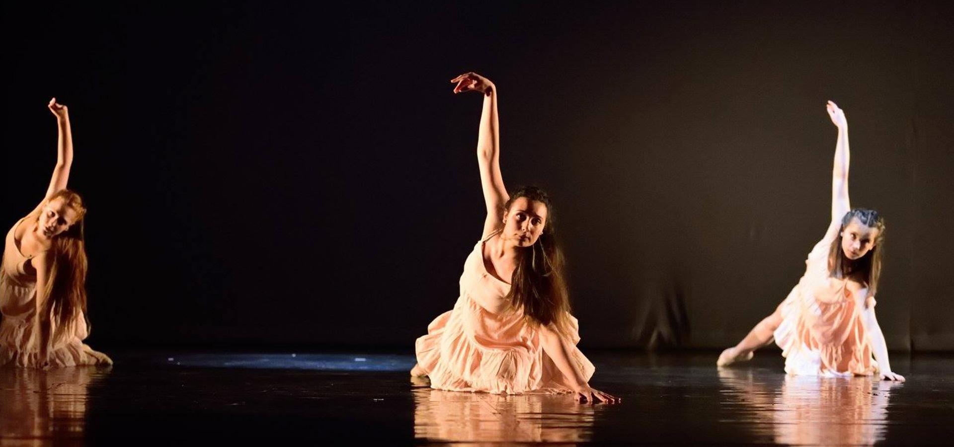 danses-et-cie-banniere-05